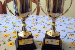 Trophies donated by MGHS OGA UK